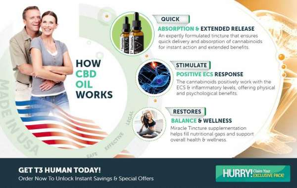https://www.thefitnesssupplement.com/t3-human-cbd-oil/