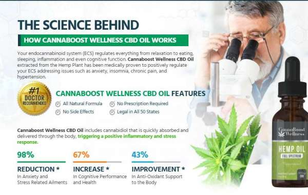 Learn From These Mistakes Before You Learn Cannaboost Wellness CBD.