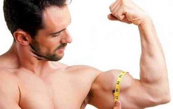 Gaining knowledge of Just how to Build Muscle for girls